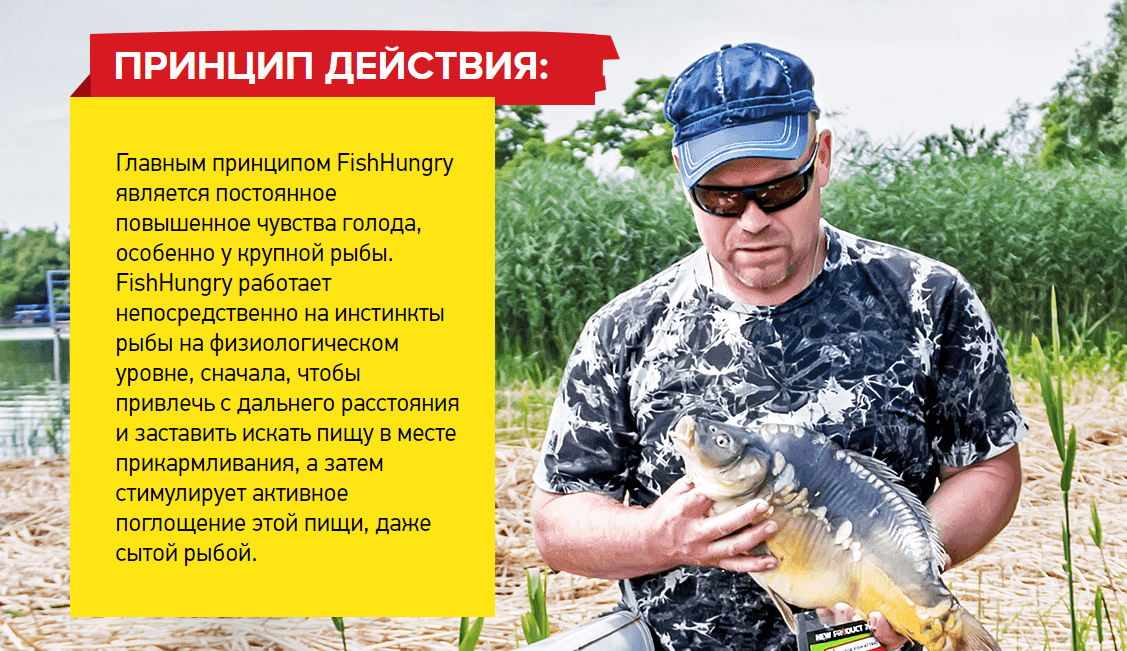 Fish Hungry - активатор клева: отзывы реальных покупателей и специалистов